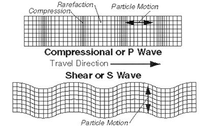 Seismic Waves propagating  P Wave