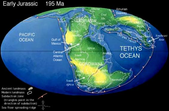 Continents And Oceans Map. Continents and Oceans Today